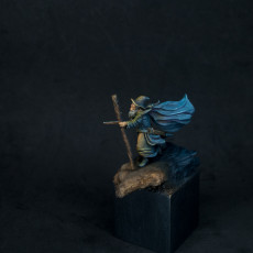 Picture of print of Gollnir the Wizard - Free STL from Mines of Maznar Kickstarter