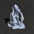 Myconids Boss - Mushroom/Forest Creatures - Tabletop Miniature - DnD image