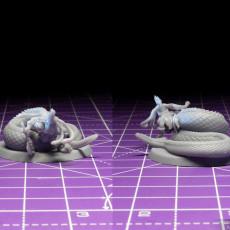 Picture of print of Medusa Elite Battle Axe Pose 3