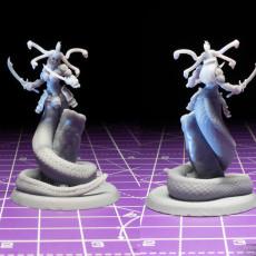 Picture of print of Medusa Elite Sword Pose 2