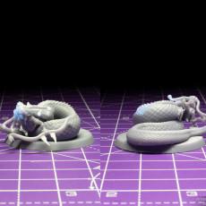 Picture of print of Medusa Elite Longbow Pose 3