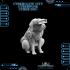 CyberGlow City Cyberpunk Cyber Dog image