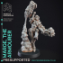 Ladies of the Table Top Pack #1 - 9 Models - PRE SUPPORTED - D&D 32mm scale image