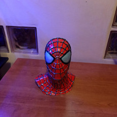 Picture of print of Spider-Man Multicolour Remix