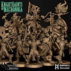 Knighthaunts of Necronnia
