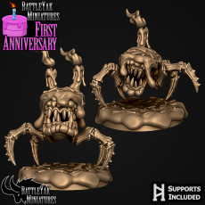 Cake Mimic Anniversary Set