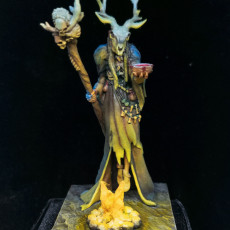 Picture of print of Shaman