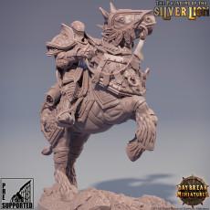 Le Chevalier Florian de l'Ancienne Bataille - The paladins of The Silver Lion