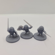 Picture of print of Mighty Owl Knights (3 poses)