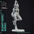 Mirko: Bunny Hero - My Hero Academia - 30cm Fanart image