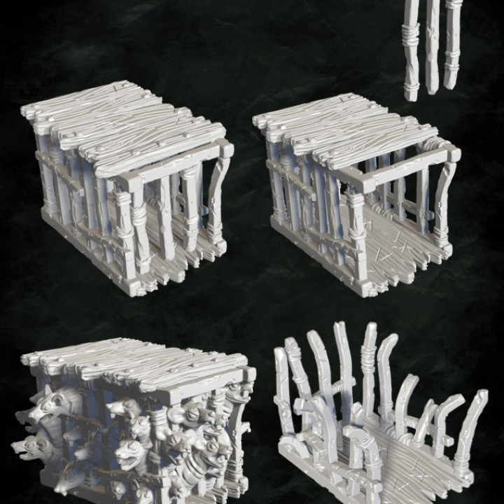 Rat cages and remains's Cover