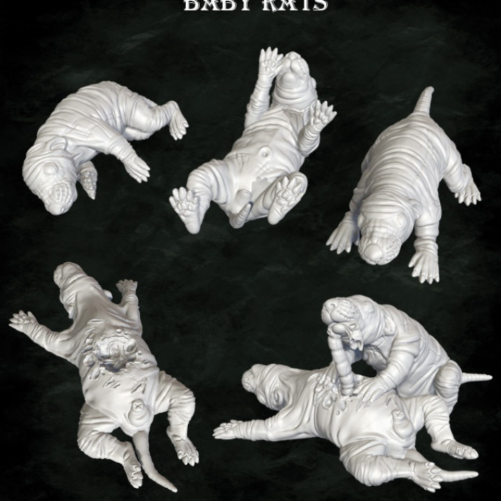 Baby rats and stockades's Cover