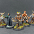 Fantasy Series 09 Bundle, 5x minis - PRE-SUPPORTED print image
