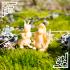 Bunny Folk - Kids image