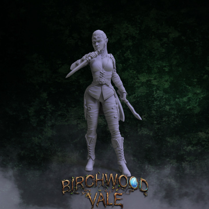 Birchwood Vale Heroes Reyleth's Cover