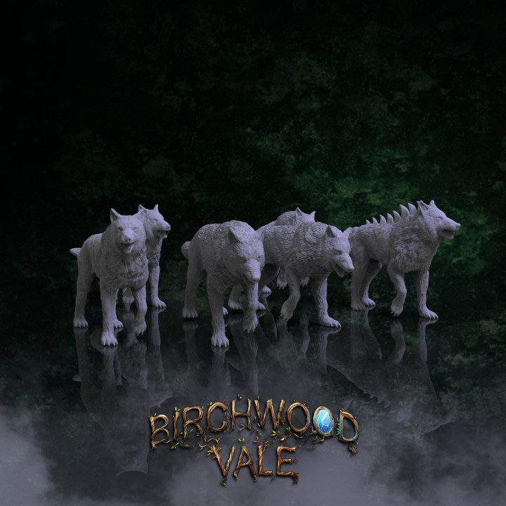 Birchwood Vale Adversaries Wolves's Cover