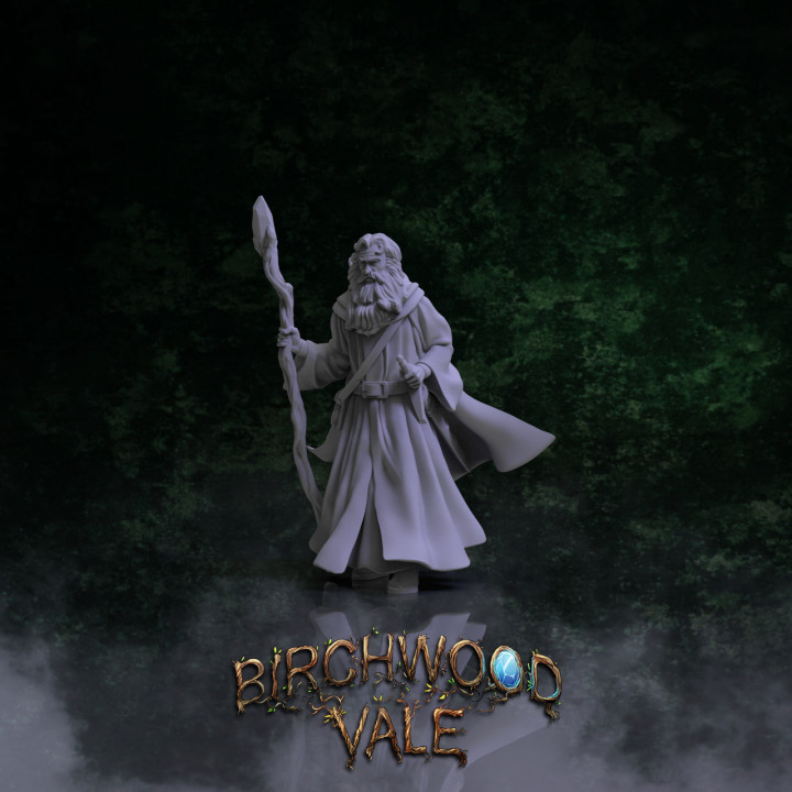 Birchwood Vale Heroes Tim the Enchanter's Cover