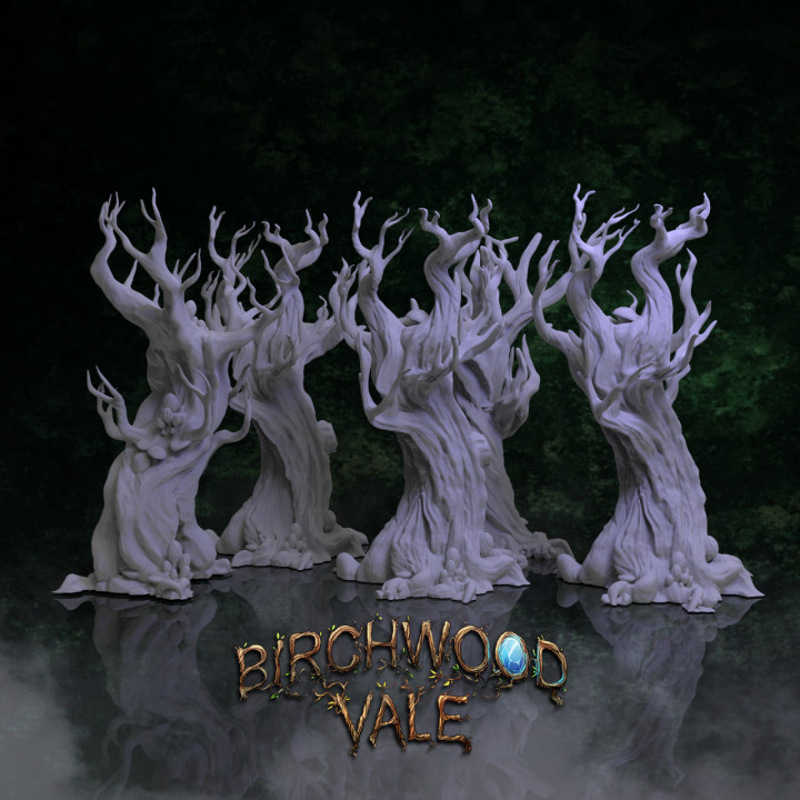 Birchwood Vale Ancient Forest's Cover
