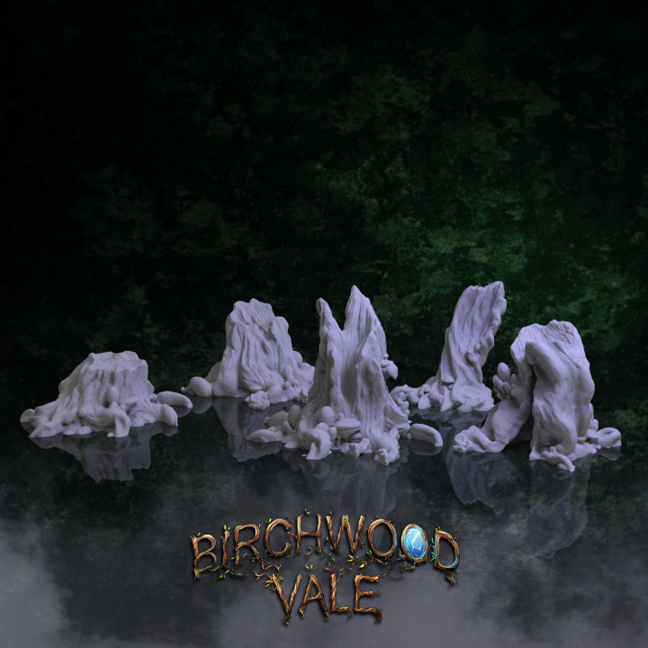 Birchwood Vale Ancient Stumps's Cover
