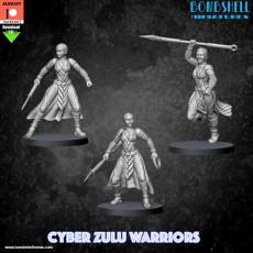 Cyber Zulu