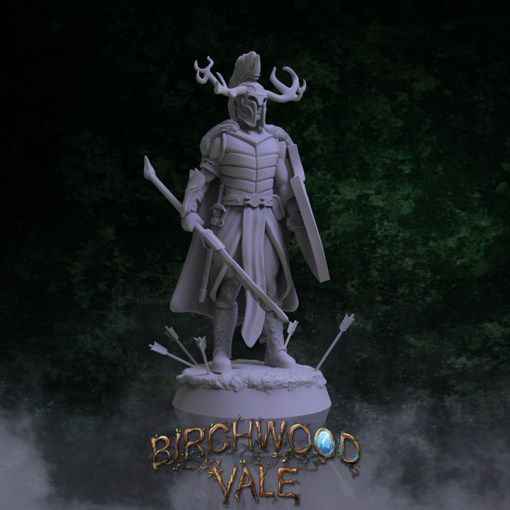 Birchwood Vale Heroes Dinenion's Cover