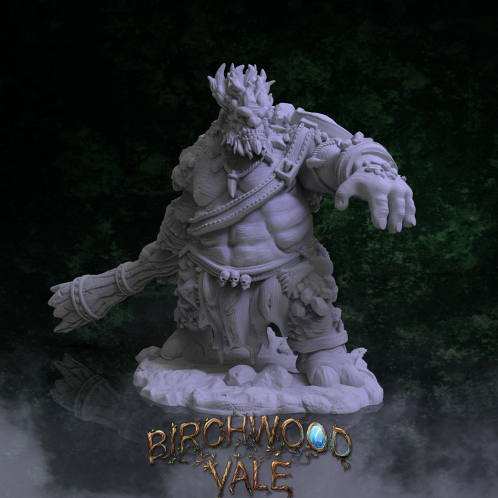 Birchwood Vale Adversaries The 1st Troll Brother's Cover