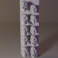 230x230 skullsfront 2