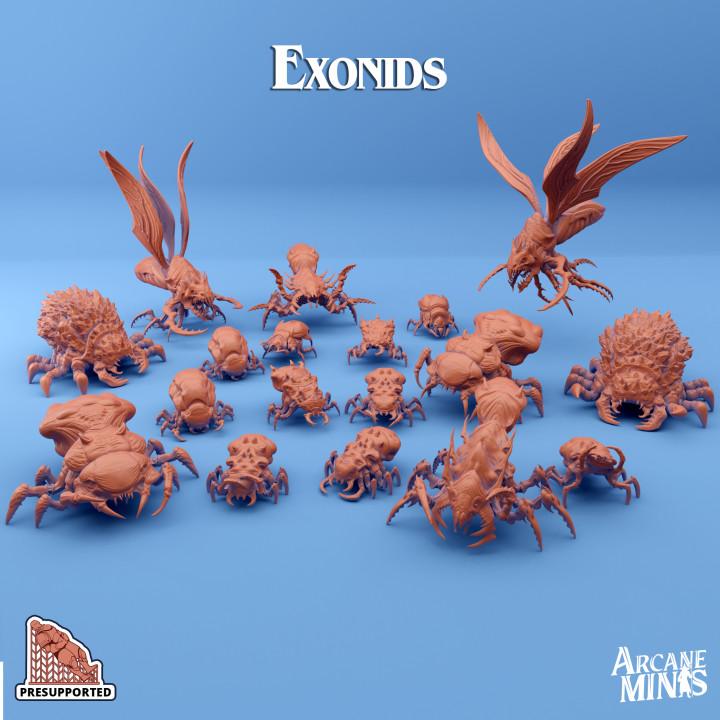 Exonids's Cover