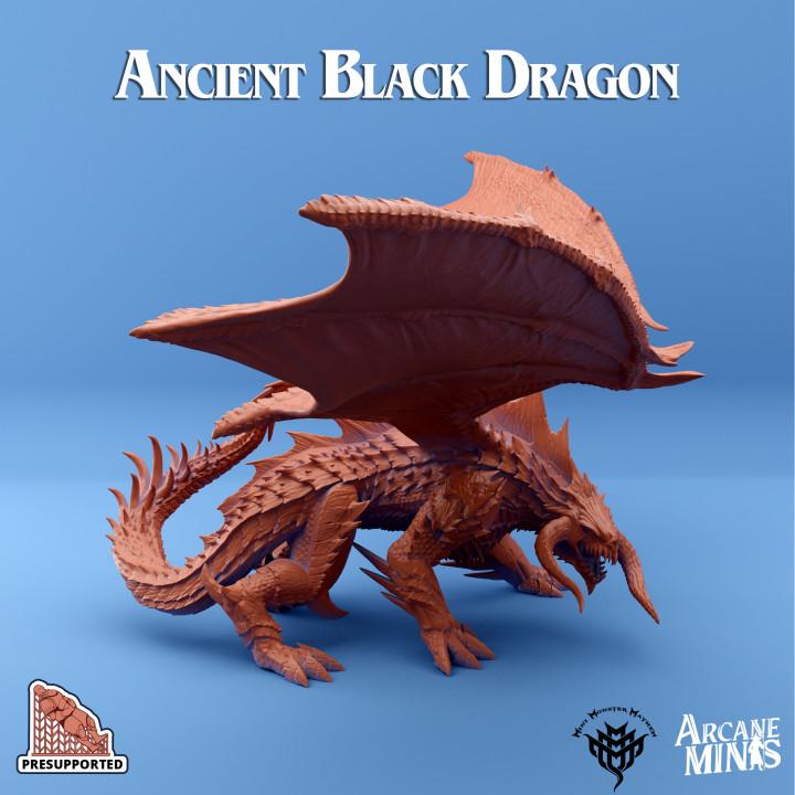 Ancient Black Dragon's Cover
