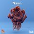 Morgius & Morgi image