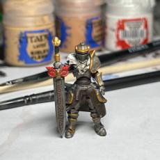 Picture of print of Kingdom of Talarius - Kickstarter Freebie Set 1 (presupported)