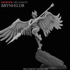 Brynhildr - Valkyrie