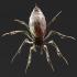 Phase Spider Pose 1 image