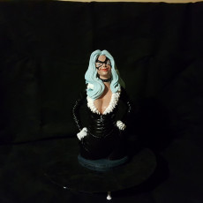Picture of print of Black Cat