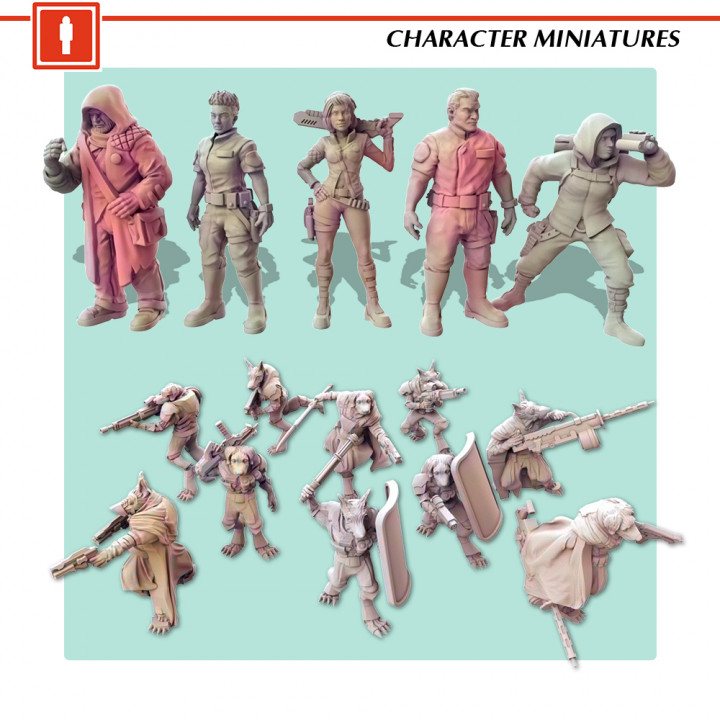 Miniatures's Cover