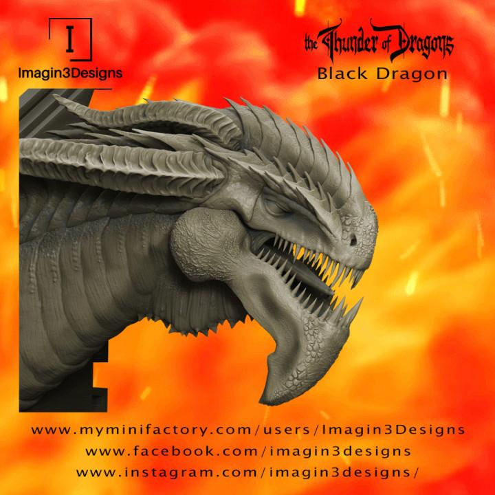 Midix'soreth -The Bone Warden- The Black Dragon's Cover