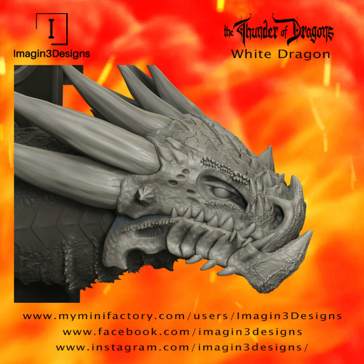 Fax'idel -The Outcast- The White Dragon's Cover