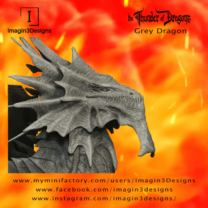 Hayiz'kathix -Demon of the Mist- The Grey Dragon's Cover