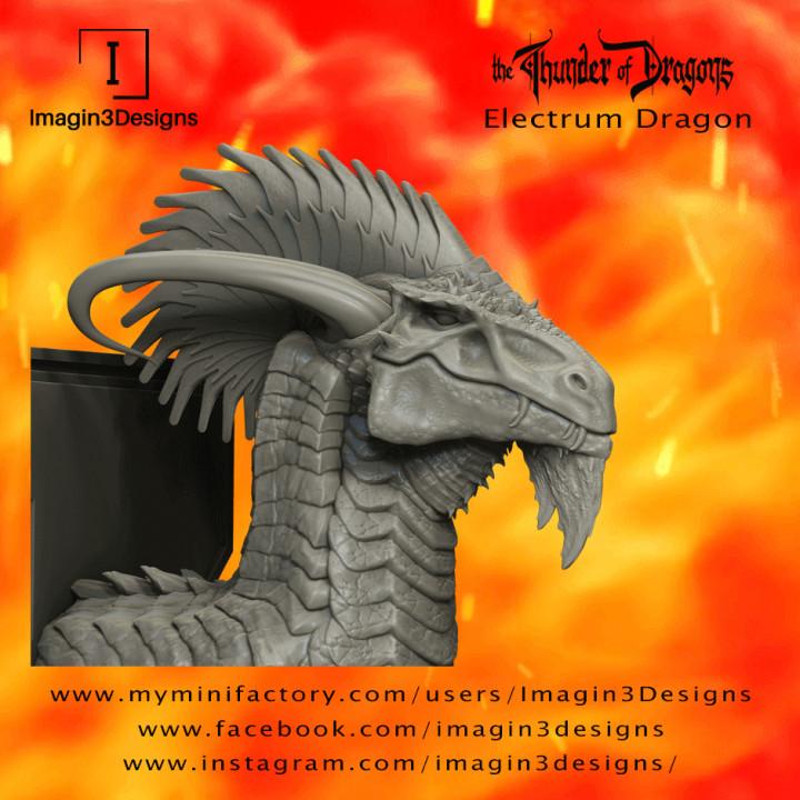 Syliz'veniz -The Glamorous- The Electrum Dragon's Cover