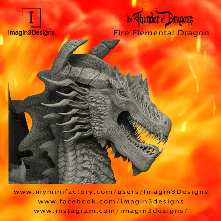 Dimintar'axix -The Maelstrom of Flames- The Fire Elemental Dragon's Cover