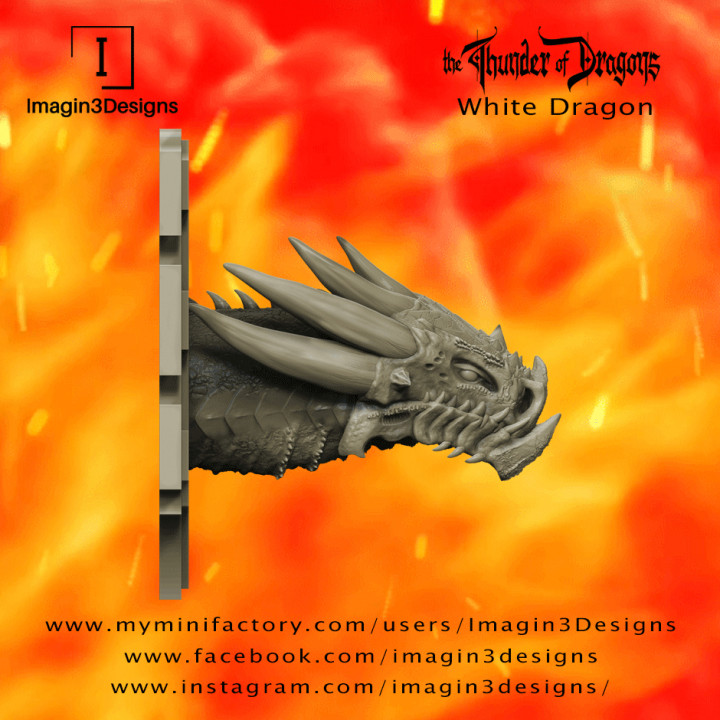 PRE-SUPPORTED Fax'idel -The Outcast- The White Dragon's Cover
