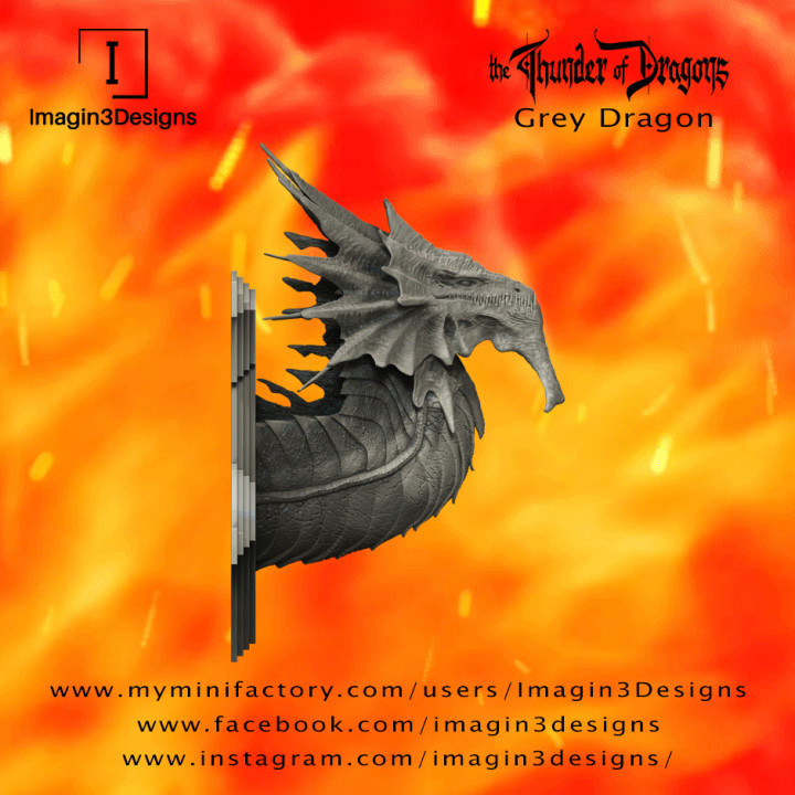 PRE-SUPPORTED Hayiz'kathix -Demon of the Mist- The Grey Dragon's Cover