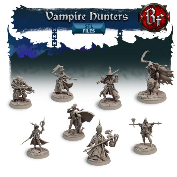 STL Vampire Hunters's Cover