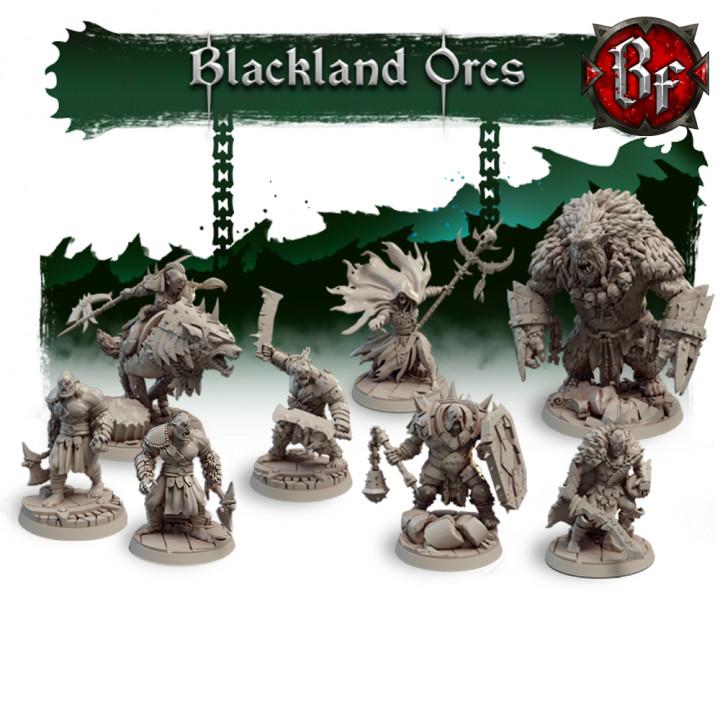 STL Blackland Orcs's Cover