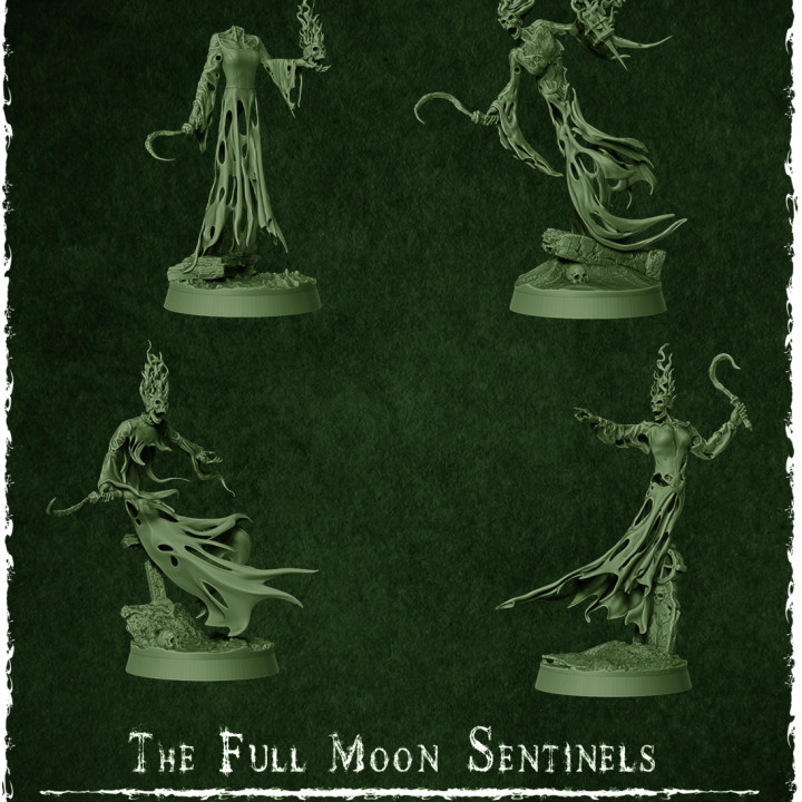 The Full Moon Sentinels's Cover
