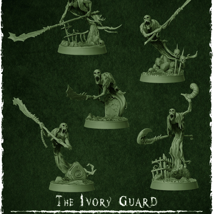 The Ivory Guard's Cover