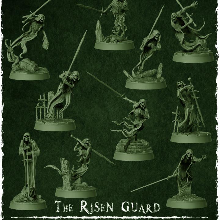 The Risen Guard's Cover