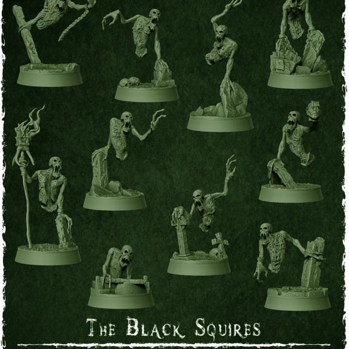 The Black Squires's Cover