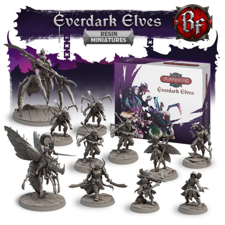 Everdark Elves Resin Miniatures Box's Cover